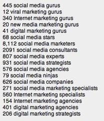 Social Media Gurus And Experts