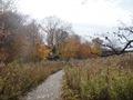 Minnesota Landscape Arboretum Fall 2010 055