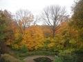 Minnesota Landscape Arboretum Fall 2010 238