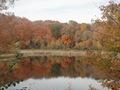 Minnesota Landscape Arboretum Fall 2010 039