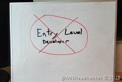 Entry Level Developer