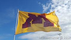 Minnesota Golden Gopher Football
