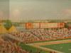 36mcnamara_alumni_centertcf_bank_stadium