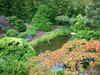 Japanese_tea_garden_2