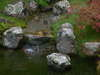 Japanese_tea_garden_water_fall_2